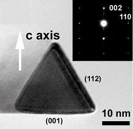 Triangular Faceted Gallium Nitride Nanowires