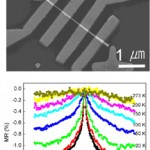 Single Crystalline diluted magnetic semiconductor GaN:Mn nanowires